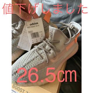 アディダス(adidas)のadidas Yeezy Boost 350 V2 True form (スニーカー)