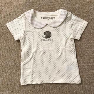 しまむら - Tシャツ 70