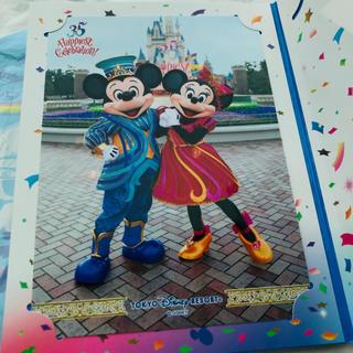 ディズニー(Disney)のディズニー 35周年 ランド フォトファン 台紙 写真 ミッキー ミニー(写真)