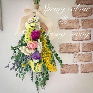 ドライフラワー*ユーカリとラナンキュラスの春色たっぷり  Spring swag(ドライフラワー)