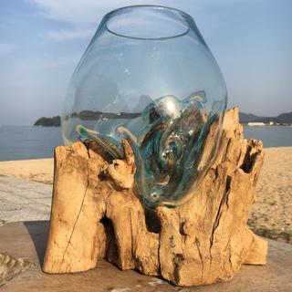 流木ガラス超特大A オブジェ 花瓶 多肉植物 金魚鉢 アート作品 テラリウム(彫刻/オブジェ)