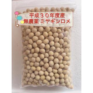 平成30年度産 無農薬 大豆(米/穀物)
