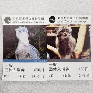 上野動物園 入場券ペア(動物園)