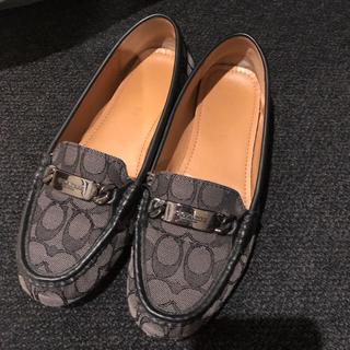 c0364fe7de3f コーチ(COACH)のコーチ レディース ローファー 靴 サイズ8 25cm(ローファー/革靴
