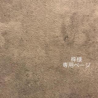 梓様 専用ページ(イヤリング)