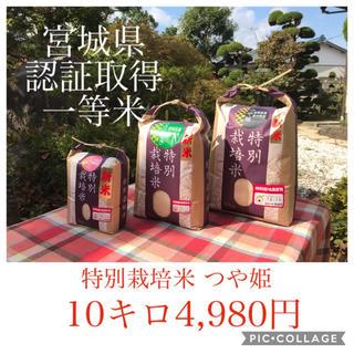 無洗米☆lehiwa様専用☆宮城県産つや姫10キロ(米/穀物)