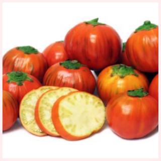 ★1名様限定★ ターキッシュオレンジなす(ジロ)の種10粒(野菜)