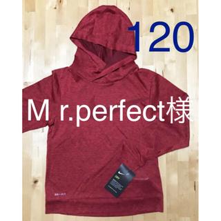ナイキ(NIKE)のMr.perfect様  専用   パーカー2枚(Tシャツ/カットソー)