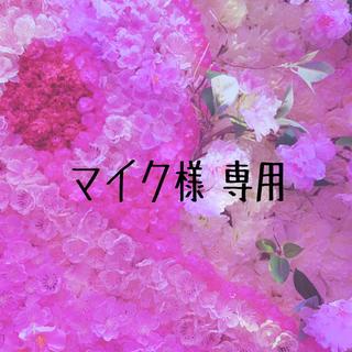 マイク様 専用ページ(写真)
