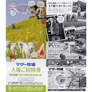 マザー牧場 入場ご招待券 3枚セット 2019年6月30日まで(遊園地/テーマパーク)