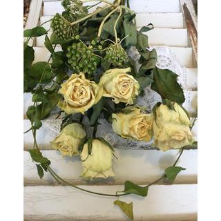 花材増量グリーンホワイト系色薔薇ドライフラワー6本、森の花、蔓グリーン(ドライフラワー)