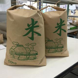 ひのひかり 中米 10キロ×2袋(米/穀物)