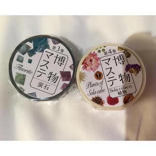 マスキングテープ 博物 マステ 蛍石 植物二本セット(テープ/マスキングテープ)
