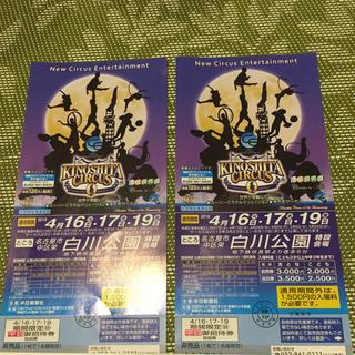 サーカス(circus)の木下大サーカス チケット 名古屋 期間限定 (平日)2枚(サーカス)