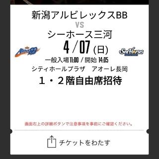 新潟アルビレックスBB VS シーホース三河(バスケットボール)
