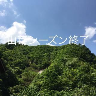 新潟県 魚沼産の山菜(野菜)