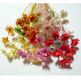 スターフラワーブロッサム8色花材①(ドライフラワー)