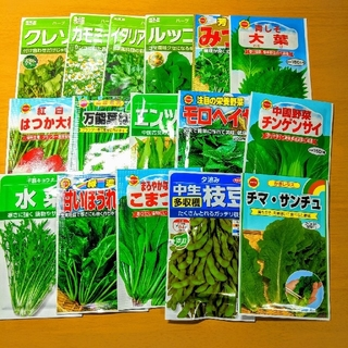 【60種類】野菜の種、ハーブの種、花の種 自分の欲しい種類を選んで購入! (野菜)