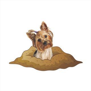 ヨークシャテリア ヨーキーデカシール ウォールステッカー♪ 新品未使用品005(犬)