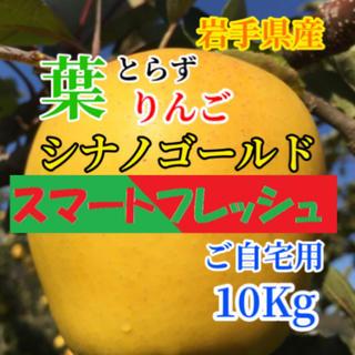 【送料込】スマートフレッシュ 葉とらず シナノゴールド 33〜39個 約10kg(フルーツ)