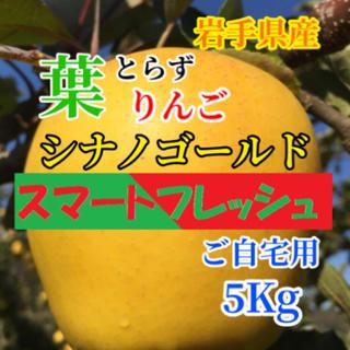 【送料込】葉とらずりんご シナノゴールド 15〜18個前後 約5kg(フルーツ)