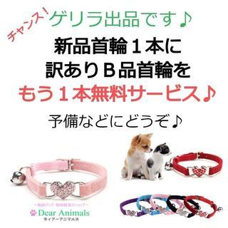猫用首輪 ねこ首輪 小型犬用首輪 お得な訳ありB品1本サービス♪ 002(猫)