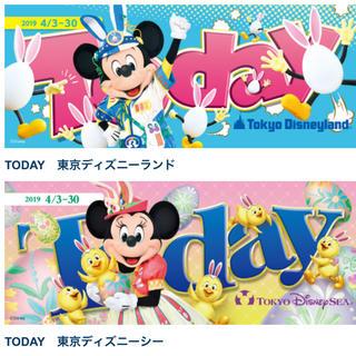 ディズニー(Disney)のディズニー Today トゥデイ パンフレット(印刷物)