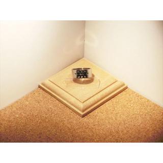 【ステンレスリング】【10号】シルバー色 幾何学模様 雪の結晶風デザイン【指輪】(リング(指輪))