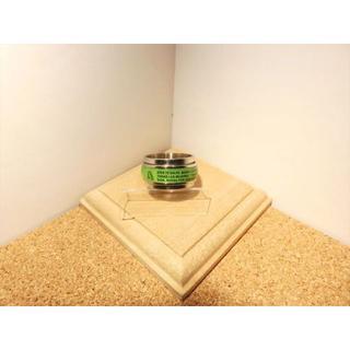 【ステンレスリング】【14号】シルバー×グリーン色 聖書・マリア フチ付きリング(リング(指輪))