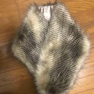 ヴァージニア(Verginia)の毛皮 ファー (毛皮/ファーコート)
