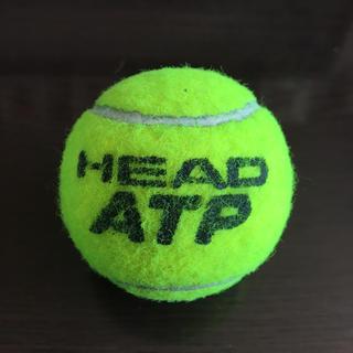 ヘッド(HEAD)の【USED】テニスボール 〈ダイエット・マッサージ・腰痛・出産準備に♡〉(ボール)