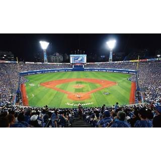 ヨコハマディーエヌエーベイスターズ(横浜DeNAベイスターズ)の4/24 横浜vs阪神タイガース SS席(野球)