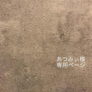 あつみぃ様 専用ページ(イヤリング)