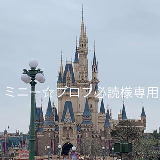 ディズニー(Disney)のミニー☆プロフ必読様専用(その他)