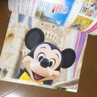 ディズニー(Disney)のディズニーファン 2019年2月号(アート/エンタメ/ホビー)