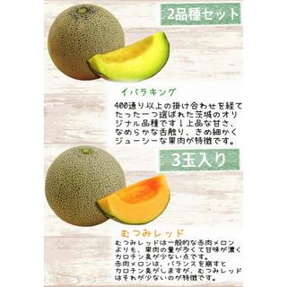 産地直送 茨城県鉾田市産 むつみレッド 3.3kg 3玉  糖度15度以上(フルーツ)