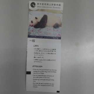 上野動物園 大人入場券2枚セット即購入OK(動物園)
