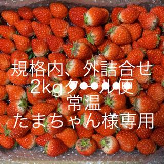 たまちゃん様専用●規格内、外詰合せ2kg●常温●さがほのか苺(フルーツ)