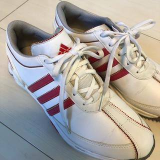 アディダス(adidas)のアディダス ゴルフシューズ 23.5センチ(シューズ)