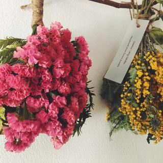 ミモザとスターチスのツインスワッグガーランドA pink & yellow (ドライフラワー)