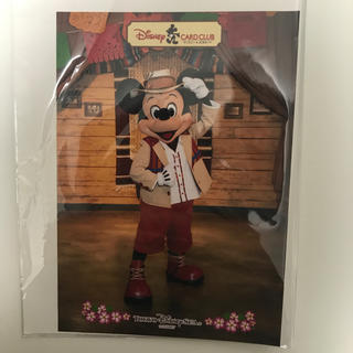 ミッキーマウス(ミッキーマウス)のディズニー JCB グリーティング ミッキー スペシャルフォト フォトファン(写真)
