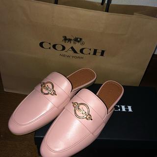 コーチ(COACH)のcoach 靴(サンダル)