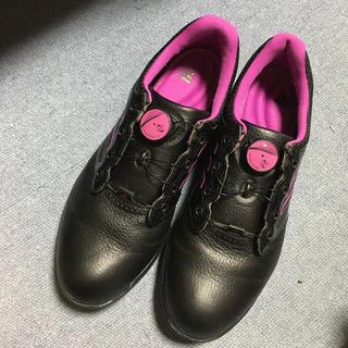 アディダス(adidas)のadidas ゴルフシューズ 24.5センチ ダイヤル(シューズ)