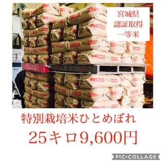 新米☆大粒☆特A取得☆宮城県産ひとめぼれ25キロ(米/穀物)
