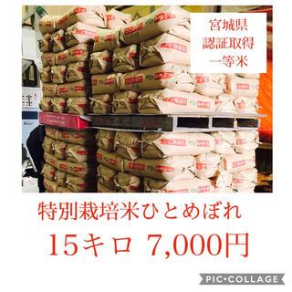 新米☆大粒☆特A取得☆宮城県産ひとめぼれ15キロ(米/穀物)