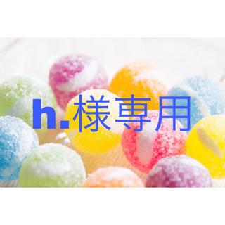 h.様専用ページ(クリアファイル)