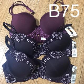 ブラジャー B75 3枚セット パープル 紫(ブラ)