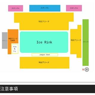 【4月11日南5列】国別対抗戦2019チケット 1枚(ウィンタースポーツ)