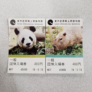 上野動物園 ペアチケット(動物園)