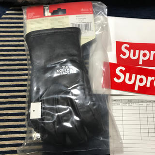 シュプリーム(Supreme)の17FW SUPREME TheNorthFace LeatherGloves (手袋)